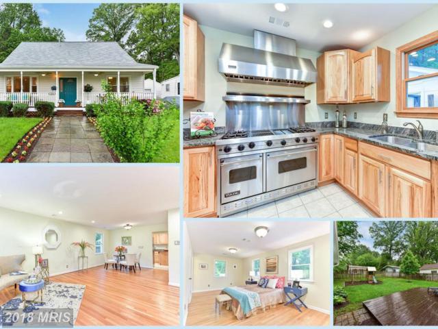 3128 Wayne Road, Falls Church, VA 22042 (#FX10250937) :: Fine Nest Realty Group
