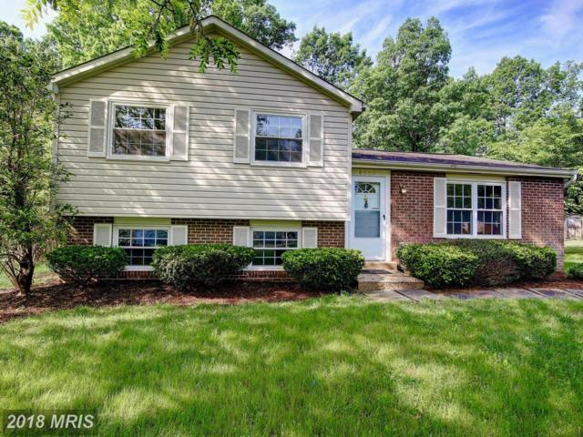 4505 Cub Run Road, Chantilly, VA 20151 (#FX10251062) :: RE/MAX Executives