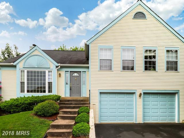 13709 Southernwood Court, Chantilly, VA 20151 (#FX10251611) :: Labrador Real Estate Team