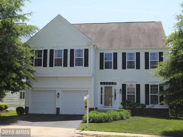 5338 Sammie Kay Lane, Centreville, VA 20120 (#FX10251800) :: Jim Bass Group of Real Estate Teams, LLC