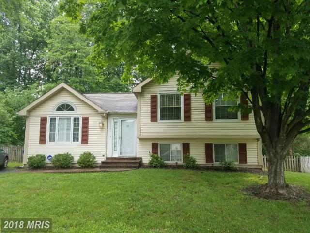 13802 Cabells Mill Drive, Centreville, VA 20120 (#FX10255689) :: The Gus Anthony Team