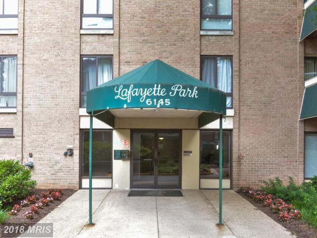 6145 Leesburg Pike #204, Falls Church, VA 22041 (#FX10255698) :: RE/MAX Executives