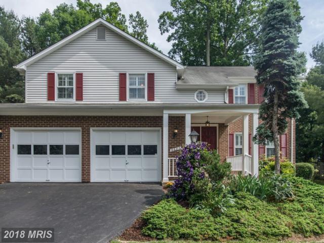6687 Stonebrook Drive, Clifton, VA 20124 (#FX10257802) :: Berkshire Hathaway HomeServices
