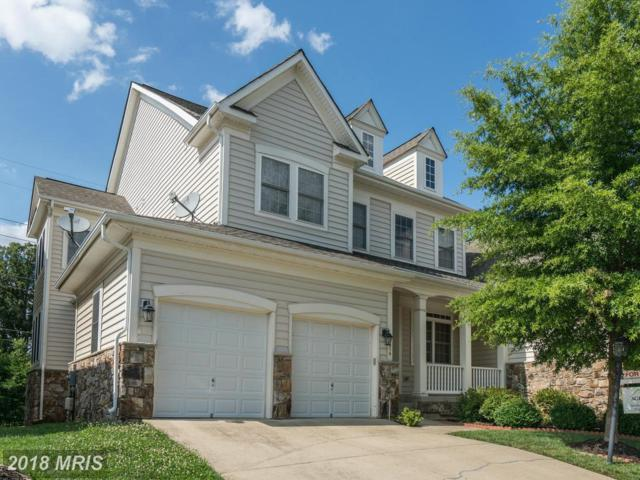13016 Red Admiral Place, Fairfax, VA 22033 (#FX10260144) :: Provident Real Estate