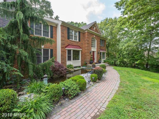 11903 Henderson Court, Clifton, VA 20124 (#FX10262117) :: Browning Homes Group
