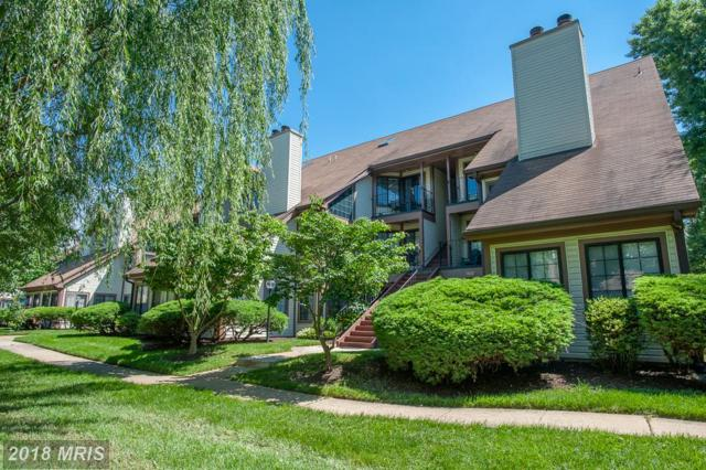 6023 Curtier Drive A, Alexandria, VA 22310 (#FX10265053) :: Charis Realty Group