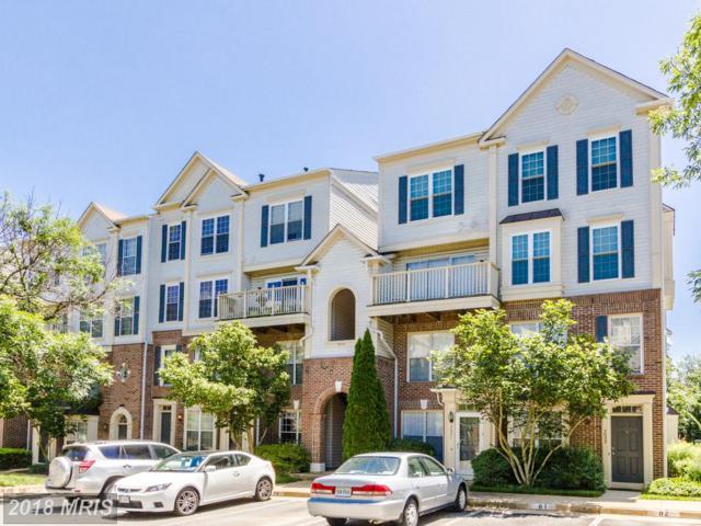 7019-D Metropolitan Place #303, Falls Church, VA 22043 (#FX10265163) :: RE/MAX Cornerstone Realty