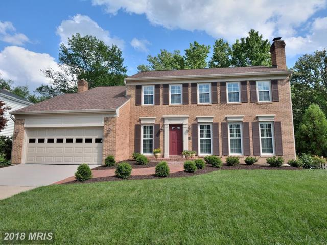 13528 Point Pleasant Drive, Chantilly, VA 20151 (#FX10265876) :: Advance Realty Bel Air, Inc
