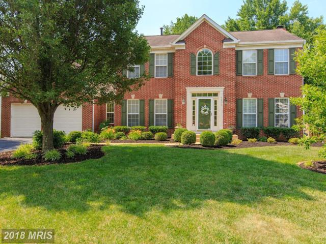6833 Corder Lane, Lorton, VA 22079 (#FX10265951) :: AJ Team Realty