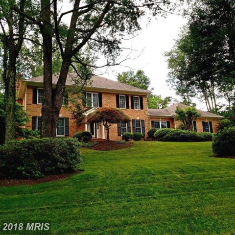 705 Crown Meadow Drive, Great Falls, VA 22066 (#FX10266896) :: Great Falls Great Homes