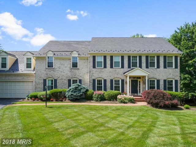 10323 Greenwood Place, Oakton, VA 22124 (#FX10267461) :: The Belt Team