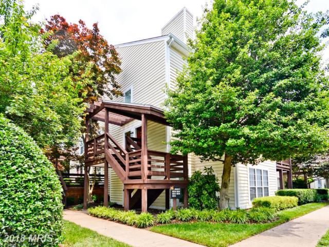 10212 Oakton Terrace Road #10212, Oakton, VA 22124 (#FX10268058) :: Circadian Realty Group