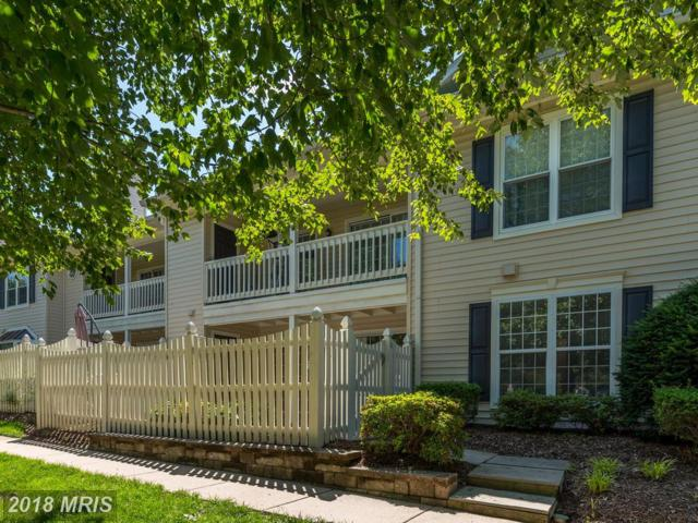 10206-A Ashbrooke Court #13, Oakton, VA 22124 (#FX10268398) :: Pearson Smith Realty