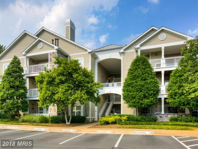1720 Lake Shore Crest Drive #33, Reston, VA 20190 (#FX10268502) :: Charis Realty Group