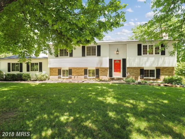 10600 Runaway Lane, Great Falls, VA 22066 (#FX10268997) :: Browning Homes Group