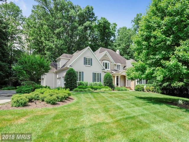 10507 Patrician Woods Court, Great Falls, VA 22066 (#FX10269246) :: Bic DeCaro & Associates