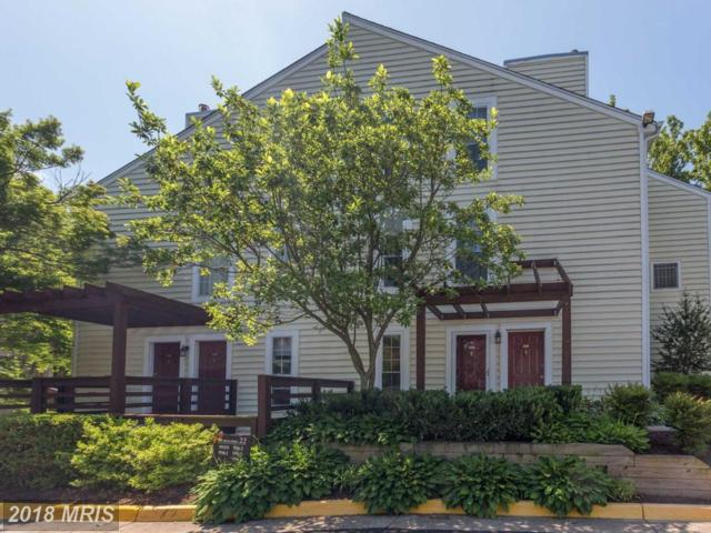 9959 Oakton Terrace Road #9959, Oakton, VA 22124 (#FX10269637) :: Circadian Realty Group