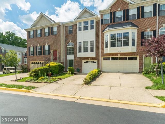 5283 Sandyford Street, Alexandria, VA 22315 (#FX10269775) :: Browning Homes Group
