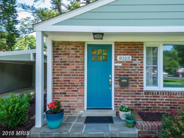 8103 Carlyle Place, Alexandria, VA 22308 (#FX10269809) :: The Gus Anthony Team