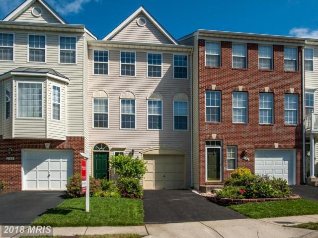 5102 Ballycastle Circle, Alexandria, VA 22315 (#FX10270011) :: Browning Homes Group