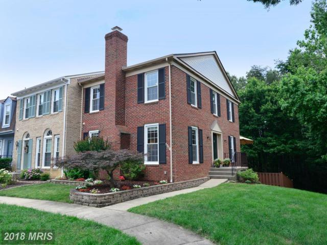 6117 Summer Park Lane, Alexandria, VA 22315 (#FX10270149) :: Browning Homes Group