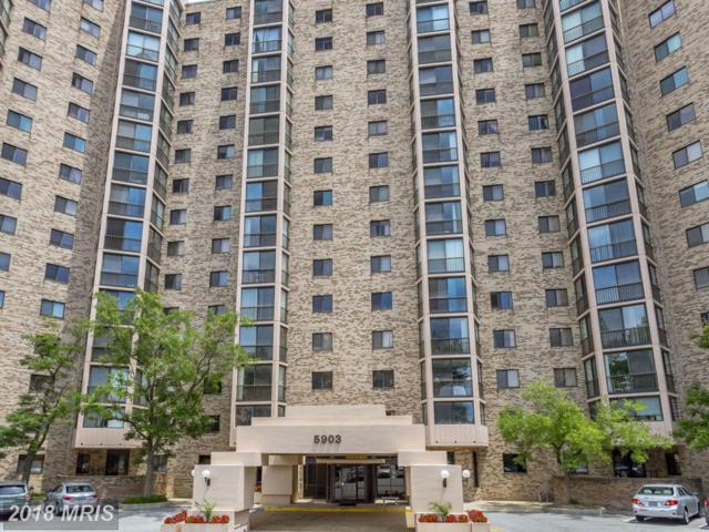 5903 Mount Eagle Drive #714, Alexandria, VA 22303 (#FX10270429) :: The Withrow Group at Long & Foster