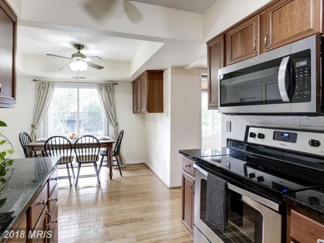 10202 Bushman Drive #211, Oakton, VA 22124 (#FX10270568) :: Berkshire Hathaway HomeServices