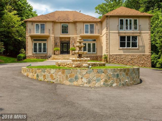 534 Utterback Store Road, Great Falls, VA 22066 (#FX10270887) :: Browning Homes Group