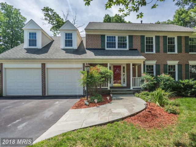 13401 Trey Lane, Clifton, VA 20124 (#FX10271253) :: Berkshire Hathaway HomeServices