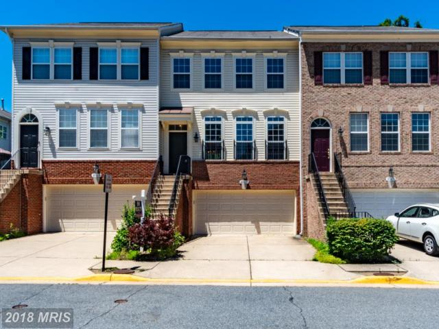8585 Wyngate Manor Court, Alexandria, VA 22309 (#FX10271455) :: Tom & Cindy and Associates
