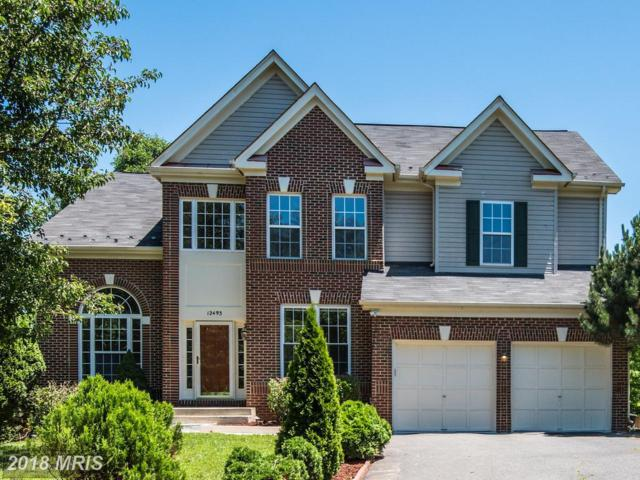12493 Cliff Edge Drive, Herndon, VA 20170 (#FX10272721) :: The Vashist Group