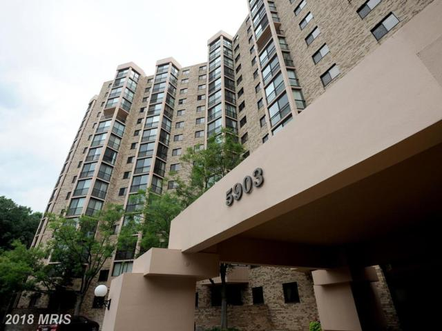 5903 Mount Eagle Drive #1116, Alexandria, VA 22303 (#FX10272911) :: Keller Williams Pat Hiban Real Estate Group