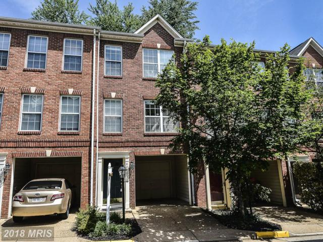 8076 Sebon Drive, Vienna, VA 22180 (#FX10272961) :: The Vashist Group