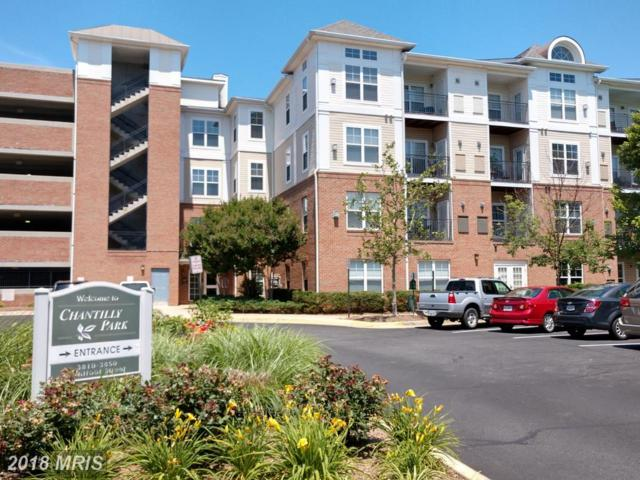 3820 Lightfoot Street #319, Chantilly, VA 20151 (#FX10272999) :: The Vashist Group