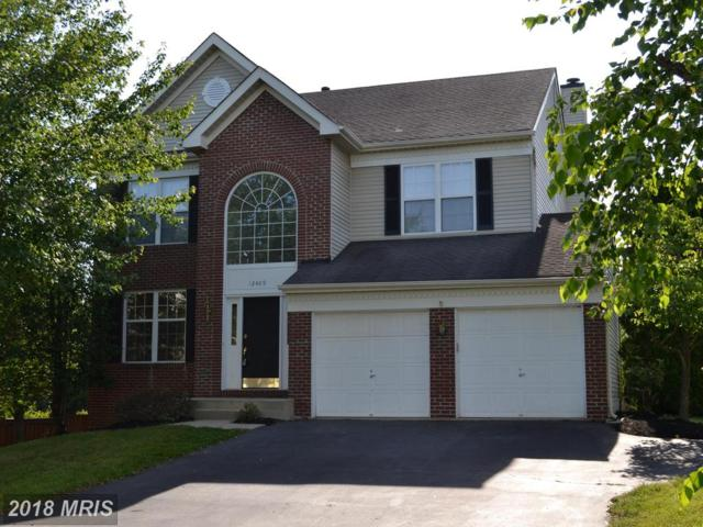 12409 Willow Falls Drive, Herndon, VA 20170 (#FX10273024) :: Wilson Realty Group