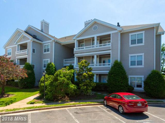 14305 Grape Holly Grove #32, Centreville, VA 20121 (#FX10274257) :: The Vashist Group