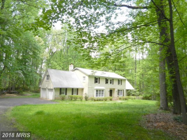 508 Haven Lane, Great Falls, VA 22066 (#FX10274735) :: Tessier Real Estate