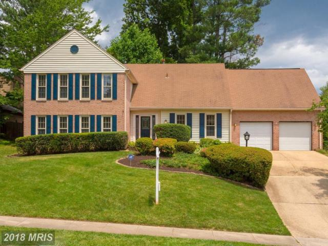 4913 Tarheel Way, Annandale, VA 22003 (#FX10275721) :: The Gus Anthony Team