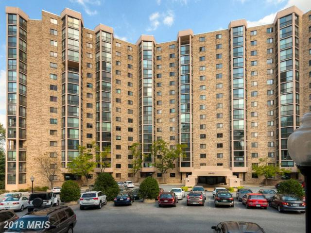 5901 Mount Eagle Drive #203, Alexandria, VA 22303 (#FX10276082) :: Keller Williams Pat Hiban Real Estate Group