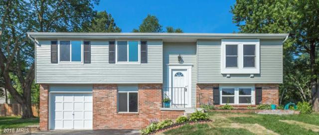 7016 Vantage Drive, Alexandria, VA 22306 (#FX10276120) :: Fine Nest Realty Group