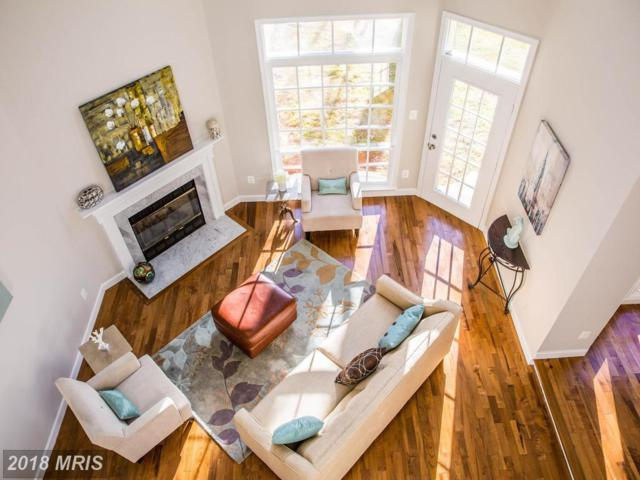 11411 Hollow Timber Way, Reston, VA 20194 (#FX10276496) :: The Foster Group