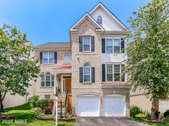 7202 Lyndam Hill Circle, Lorton, VA 22079 (#FX10276594) :: AJ Team Realty