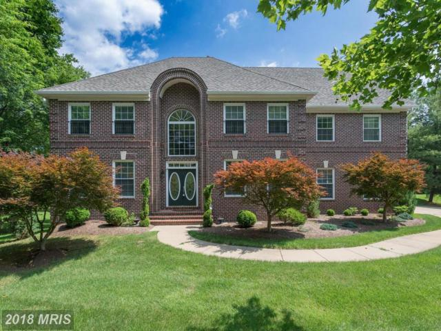 10010 Park Royal Drive, Great Falls, VA 22066 (#FX10277108) :: Bic DeCaro & Associates