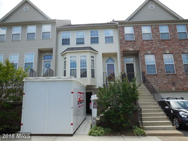 7747 Sullivan Circle, Alexandria, VA 22315 (#FX10277389) :: Bruce & Tanya and Associates
