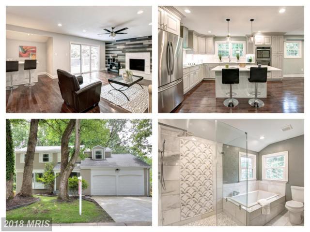8115 Langbrook Road, Springfield, VA 22152 (#FX10277513) :: Keller Williams Pat Hiban Real Estate Group