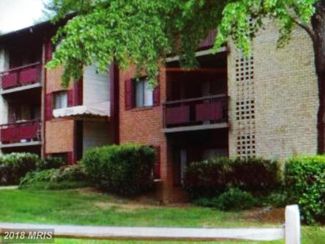 2864 Dover Lane #104, Falls Church, VA 22042 (#FX10277553) :: Keller Williams Pat Hiban Real Estate Group