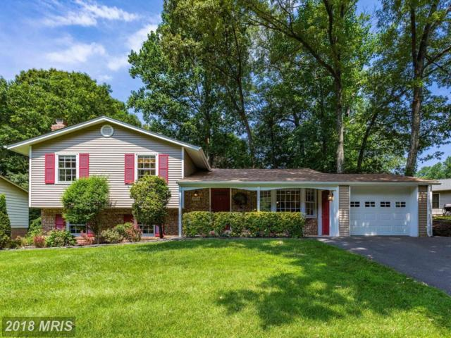 5034 Dequincey Drive, Fairfax, VA 22032 (#FX10278041) :: Circadian Realty Group