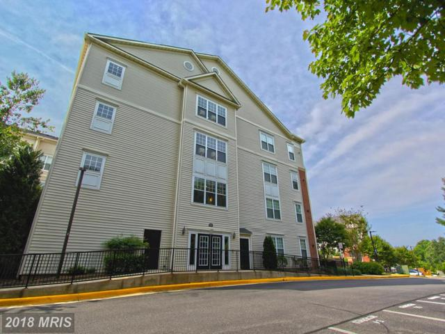 3851 Aristotle Court 1-416, Fairfax, VA 22030 (#FX10278202) :: Bic DeCaro & Associates
