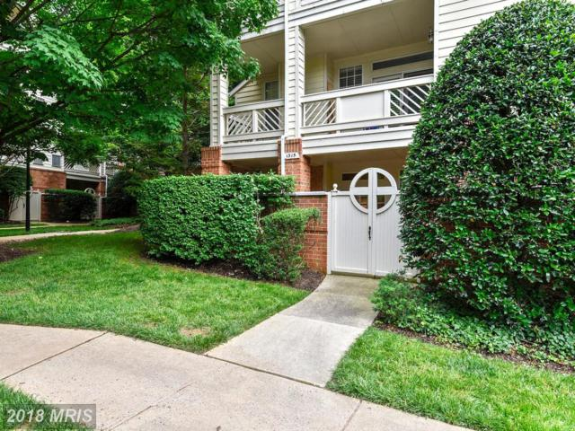 1315 Garden Wall Court #812, Reston, VA 20194 (#FX10278834) :: The Belt Team