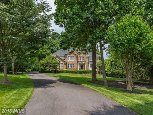 1640 White Pine Drive, Vienna, VA 22182 (#FX10278878) :: Great Falls Great Homes